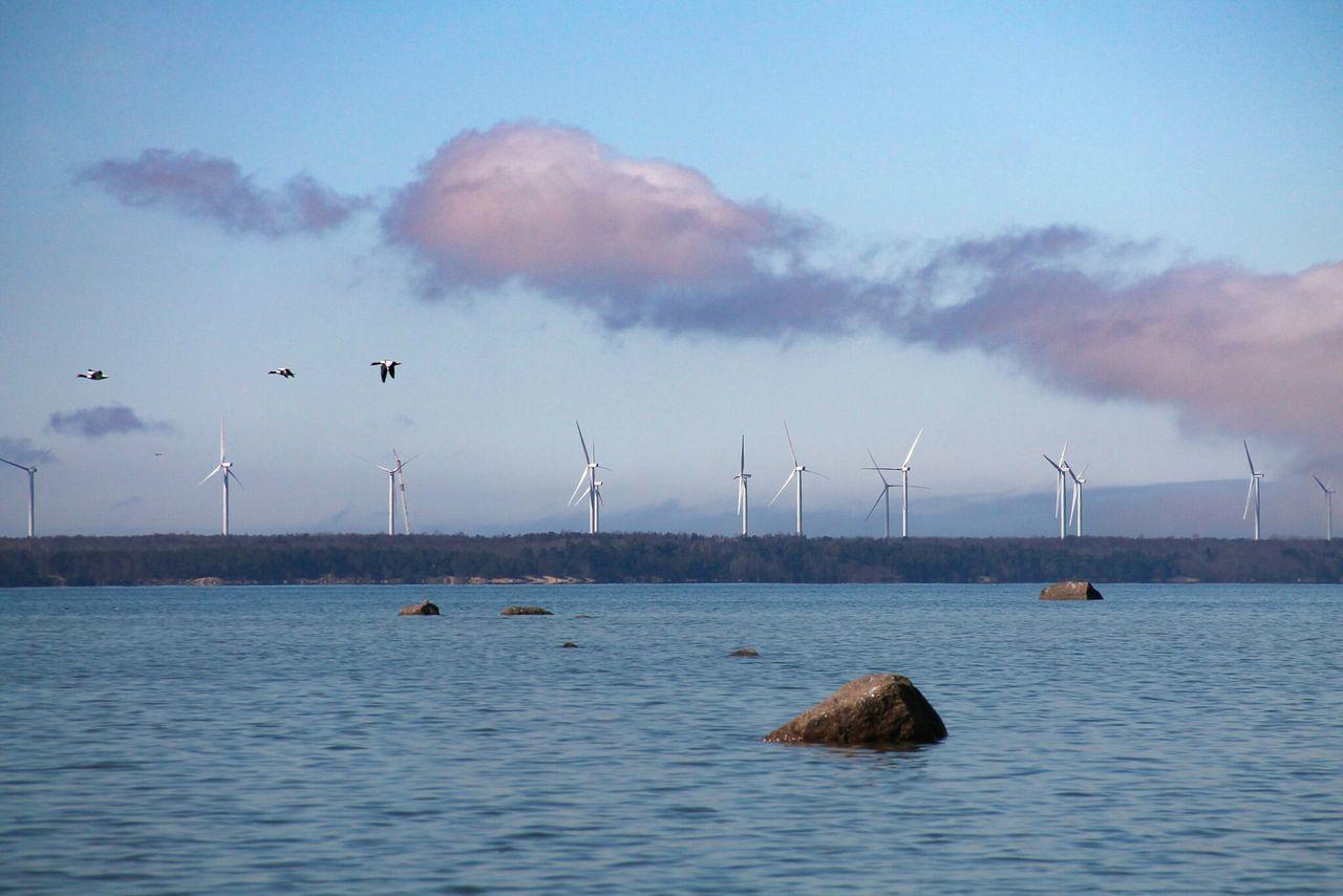 Sky No People Sea Water Nature Eesti Tallinn Day Outdoors Cloud - Sky Windmill Wind Power Renewable Energy Technology Wind Turbine Alternative Energy Environmental Conservation Fuel And Power Generation Turbine Electricity