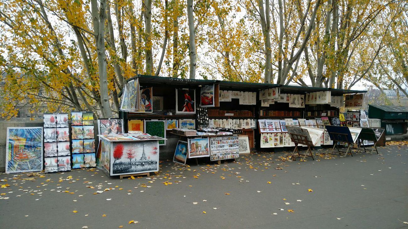 Souvenir and Art STAND. · Paris France Seine Seine River Arts Sales Tourism Culture Winter Cold Day Outdoors Trees Leaves