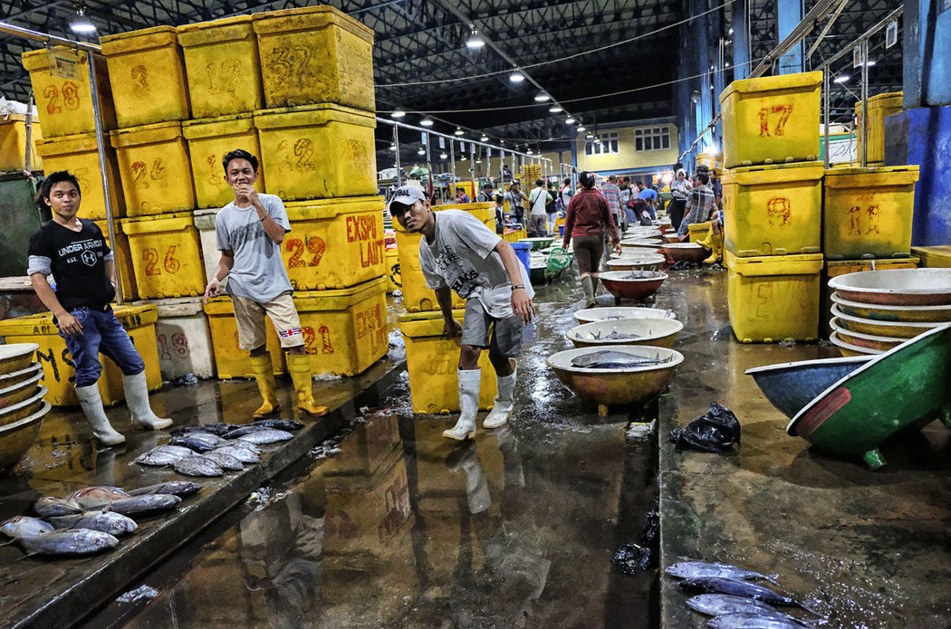 Fish Market Yellow People Man At Work Fish Catch Of The Day Simple Moment Small Business Trying To Make A Living