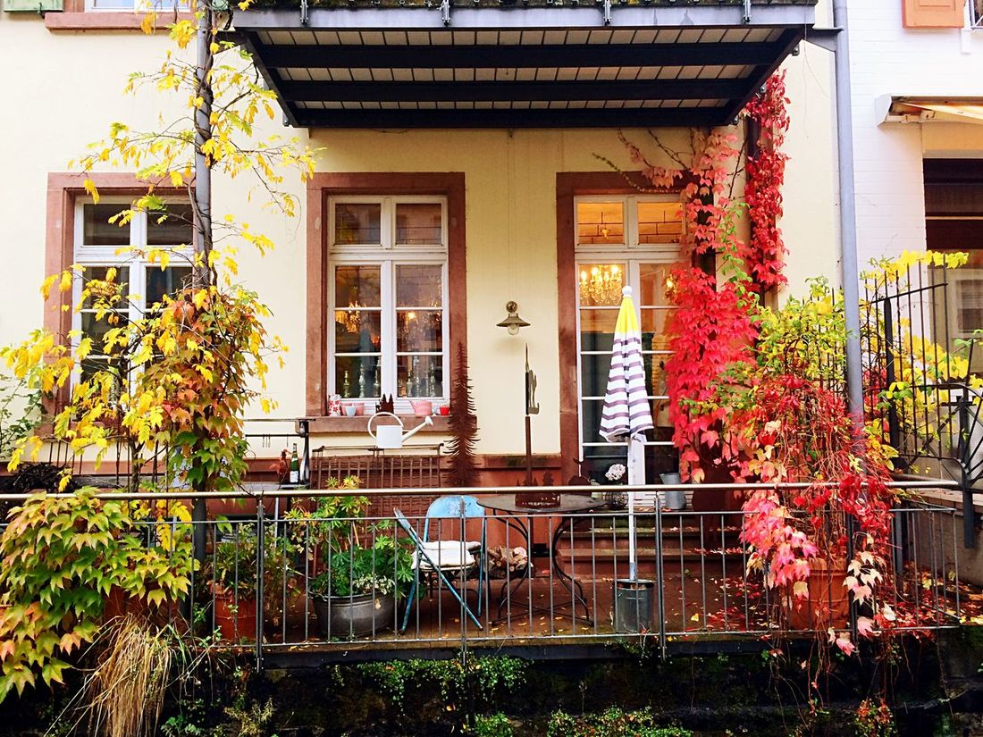 Autumn Autumn Colors Autumn Leaves House Germanhouse Nature Place To Be  Beautiful Spotted In Germany