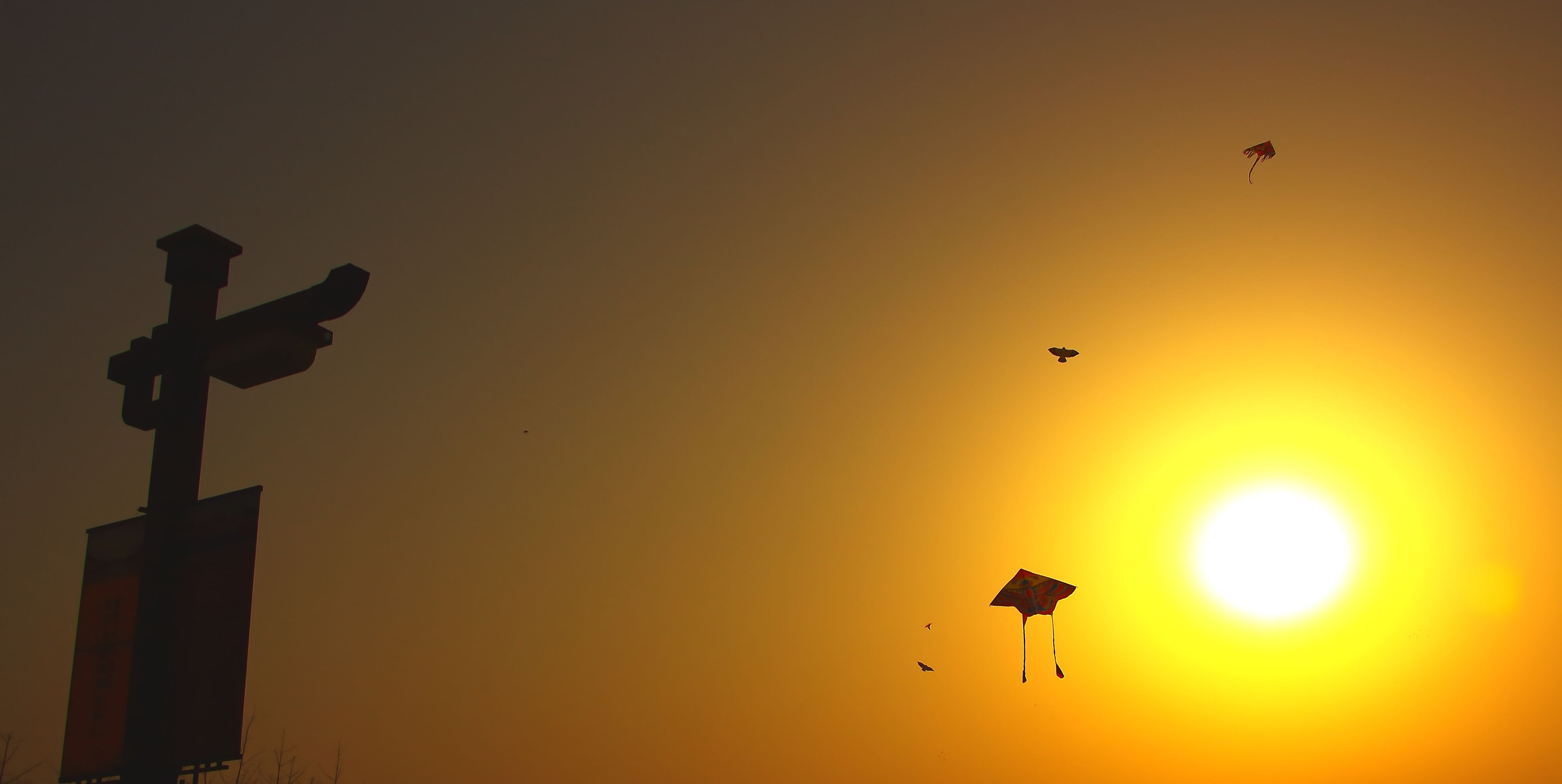 孤独的风筝