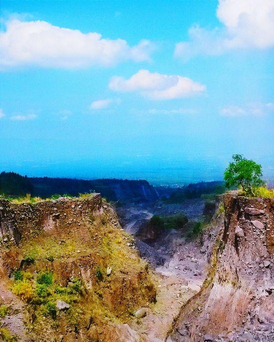 KaliAdem,Kaliurang,Yogyakarta,Indonesia Getting Inspired Taking Photos Sedimentary Hugging A Tree Nature Explore Enjoying Life Adventure Starting A Trip Traveling