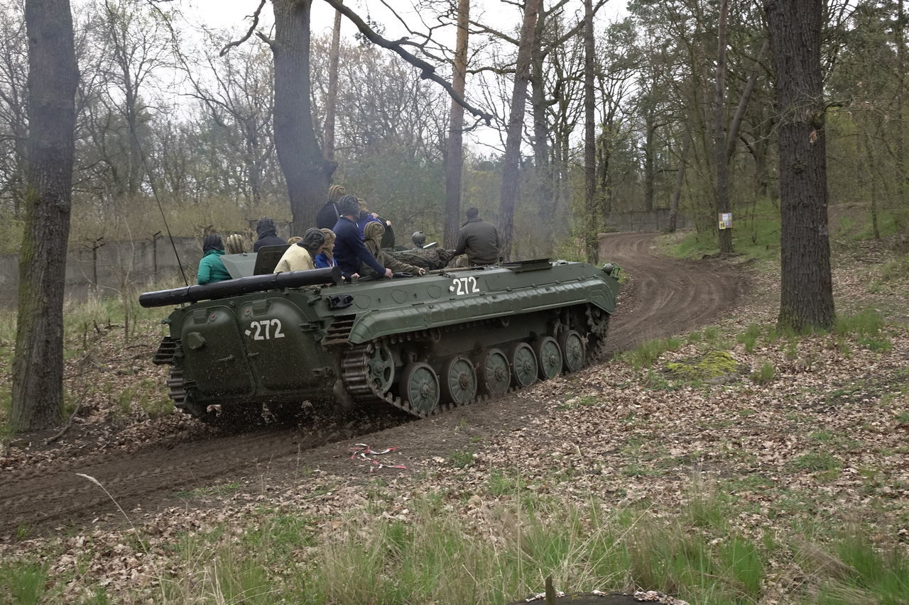 Fahren auf Russischem Panzer, Freizeitvergnügen Adult Day Forest Fun Men Military Nature One Person Outdoors People Real People Russia Sowiettank Tank Teamwork Tree Tree Trunk