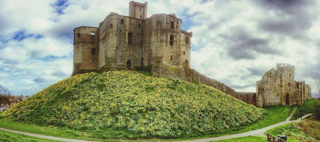 Castle Sky Daffodils Panorama