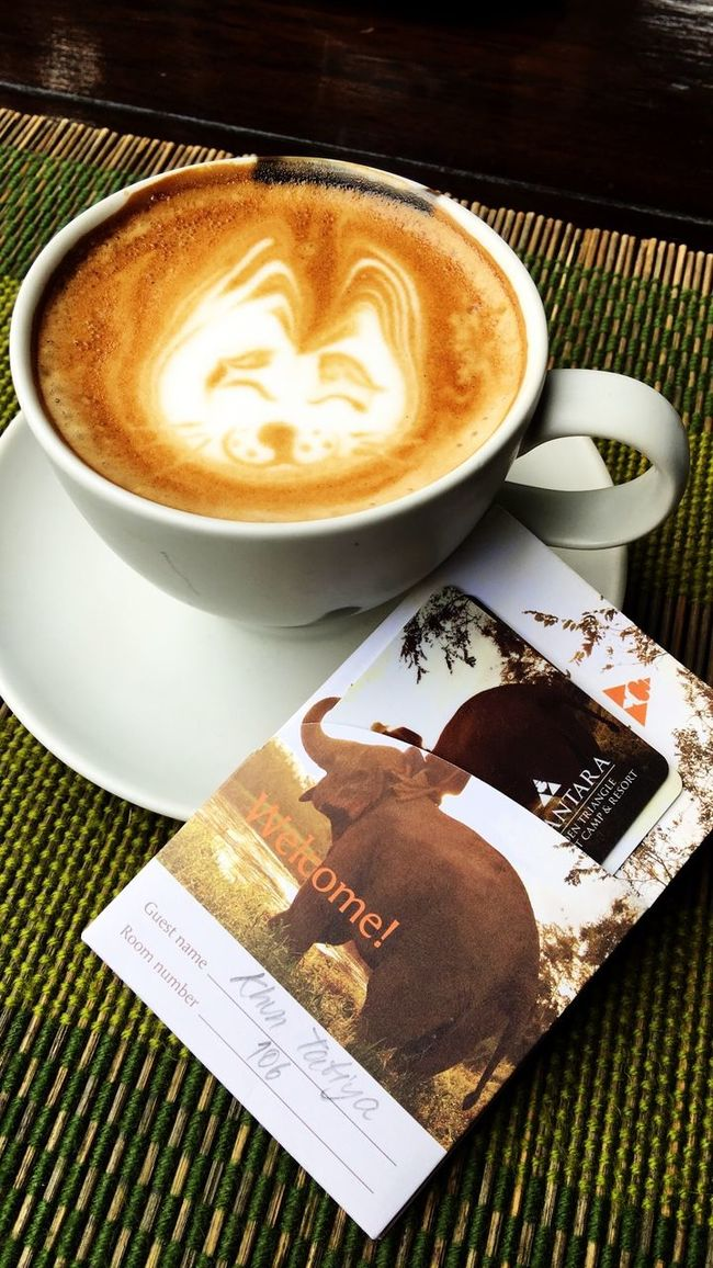 Anantara Golden Triangle Resort Beverage Breakfast Cappuccino Chiangrai Close-up Coffee Coffee Cup Cup Drink Elephant Nature Park Food And Drink Fox Face Froth Art Frothy Drink Hot Drink Lovely Moment North Of Thailand