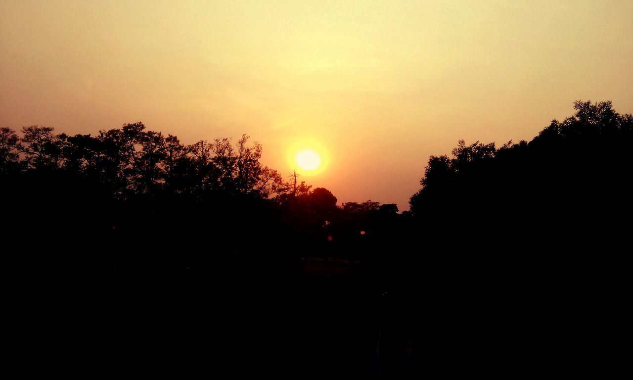 sunset, silhouette, tree, sun, nature, beauty in nature, scenics, tranquility, no people, sky, outdoors