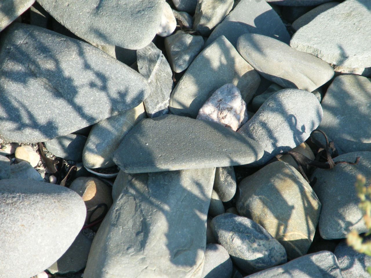 Backgrounds Close-up Day Full Frame Nature No People On The Beach Outdoors Pebbles On A Beach Stones