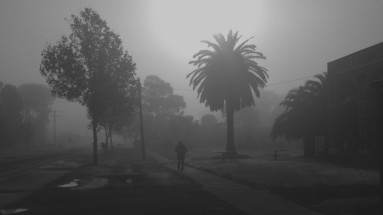 Foggy Walk IPhoneography Black And White Don't Be Square