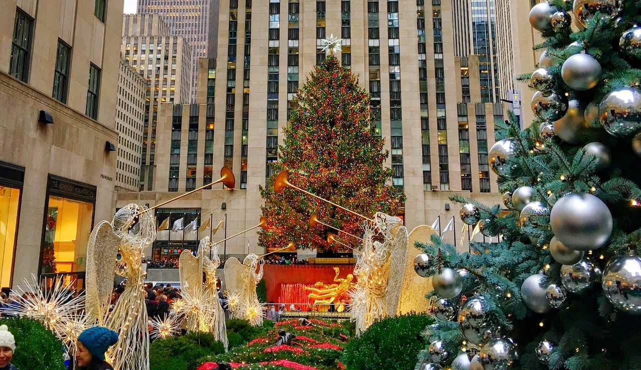 The Culture Of The Holidays Xmas Xmas Tree Christmas Tree Christmastime Christmas Around The World New York New York City Christmas In New York City Building Exterior Architecture Built Structure Tree City Growth Plant Day Tall - High Flower Outdoors No People Office Building