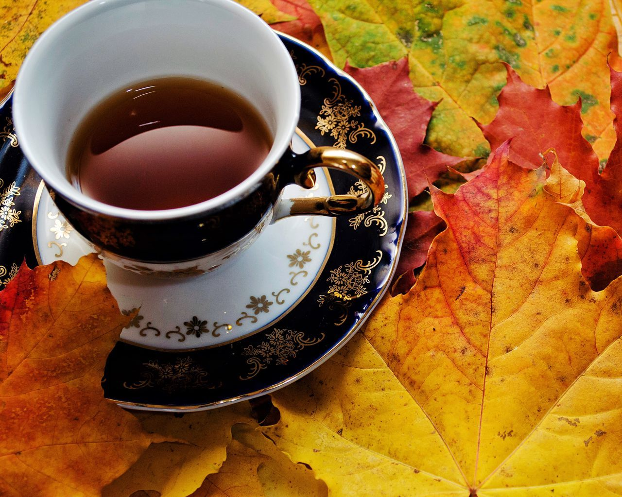 High Angle View Of Tea On Autumn Leaves