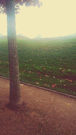 Autumn Lehavre