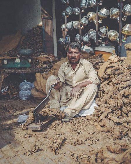 ASIA Pakistan Punjab Sahiwal Cutting Tobacco Streetphotography Panasonic  Lumix Lumixg70 Lumixg7 15mm Leica Summilux @lumix_de Travelphotography VSCO F2 Dailylife Cityofcities @everydayasia