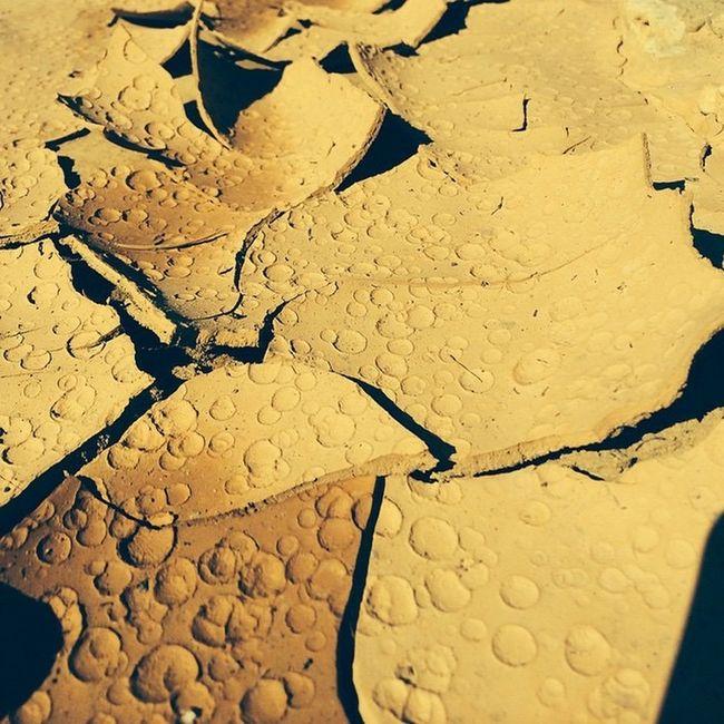 Desert Rain Drops- Nofilter IPhone Desert Beauty Explore Travel Adventures Creative Light And Shadow Waterdrops Water Droplets Photo Cred: Rundi