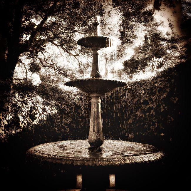 Black And White NEM Black&white Water Fountain