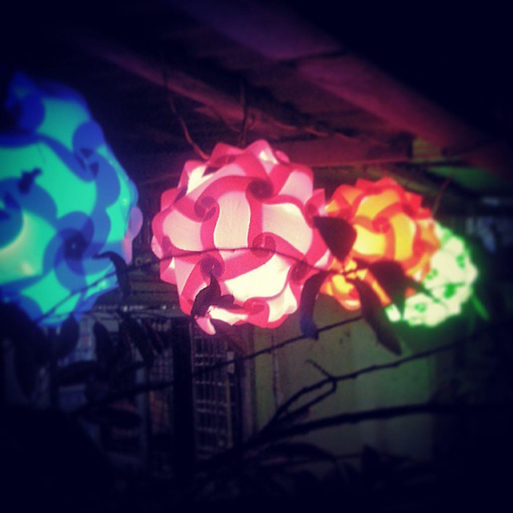 The Lights Thadinkyut