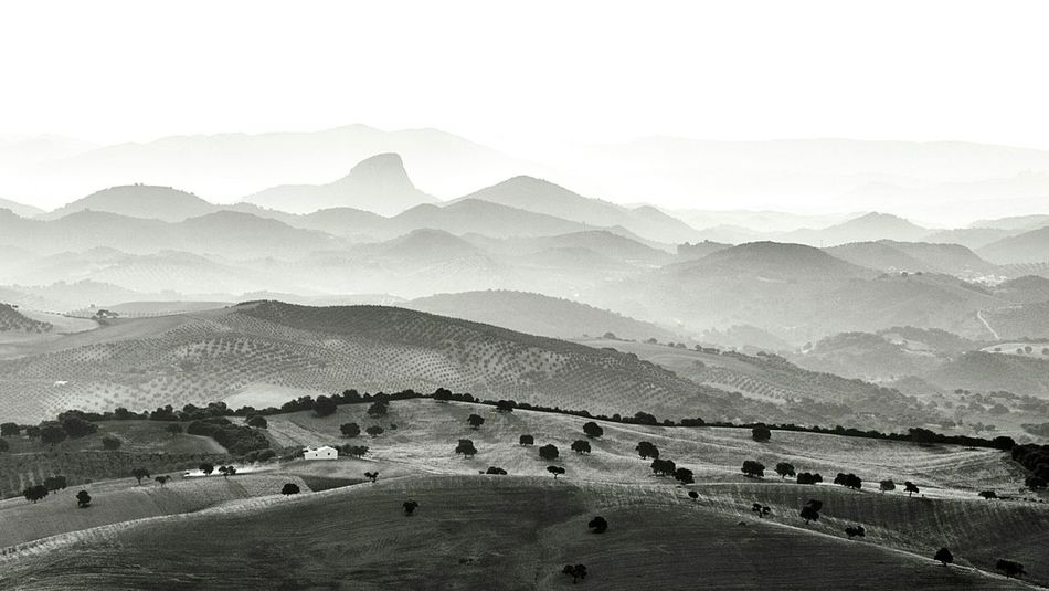 Landscape_photography Fortheloveofblackandwhite Rural Landscape Monochromatic Blancoynegro