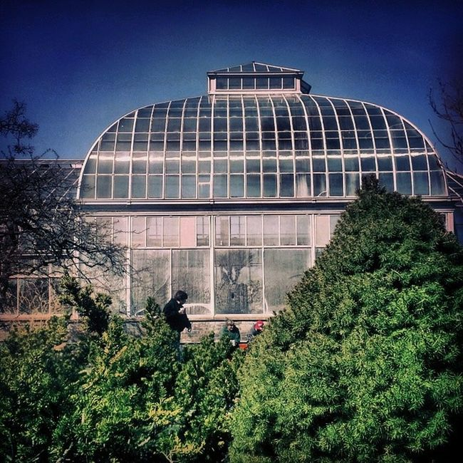 Greenhouse Side Greenhouse Belle_isle
