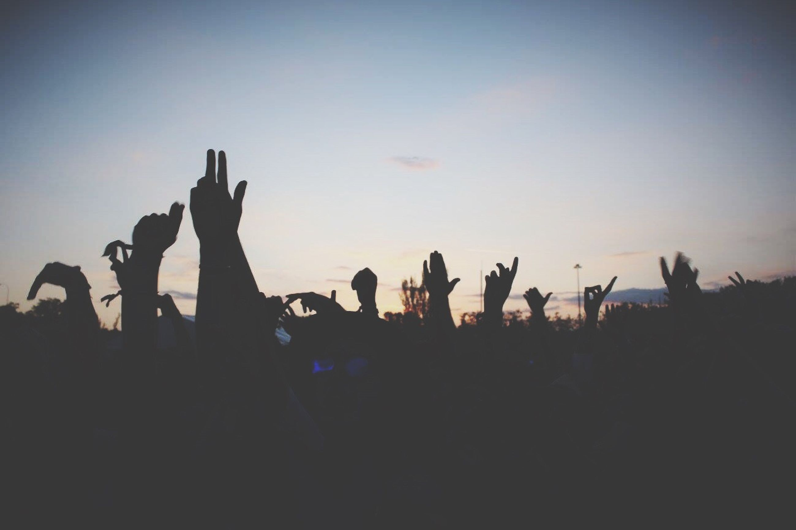 large group of people, silhouette, sunset, men, lifestyles, leisure activity, crowd, person, sky, togetherness, copy space, enjoyment, clear sky, mixed age range, dusk, outdoors, arts culture and entertainment, fun, outline