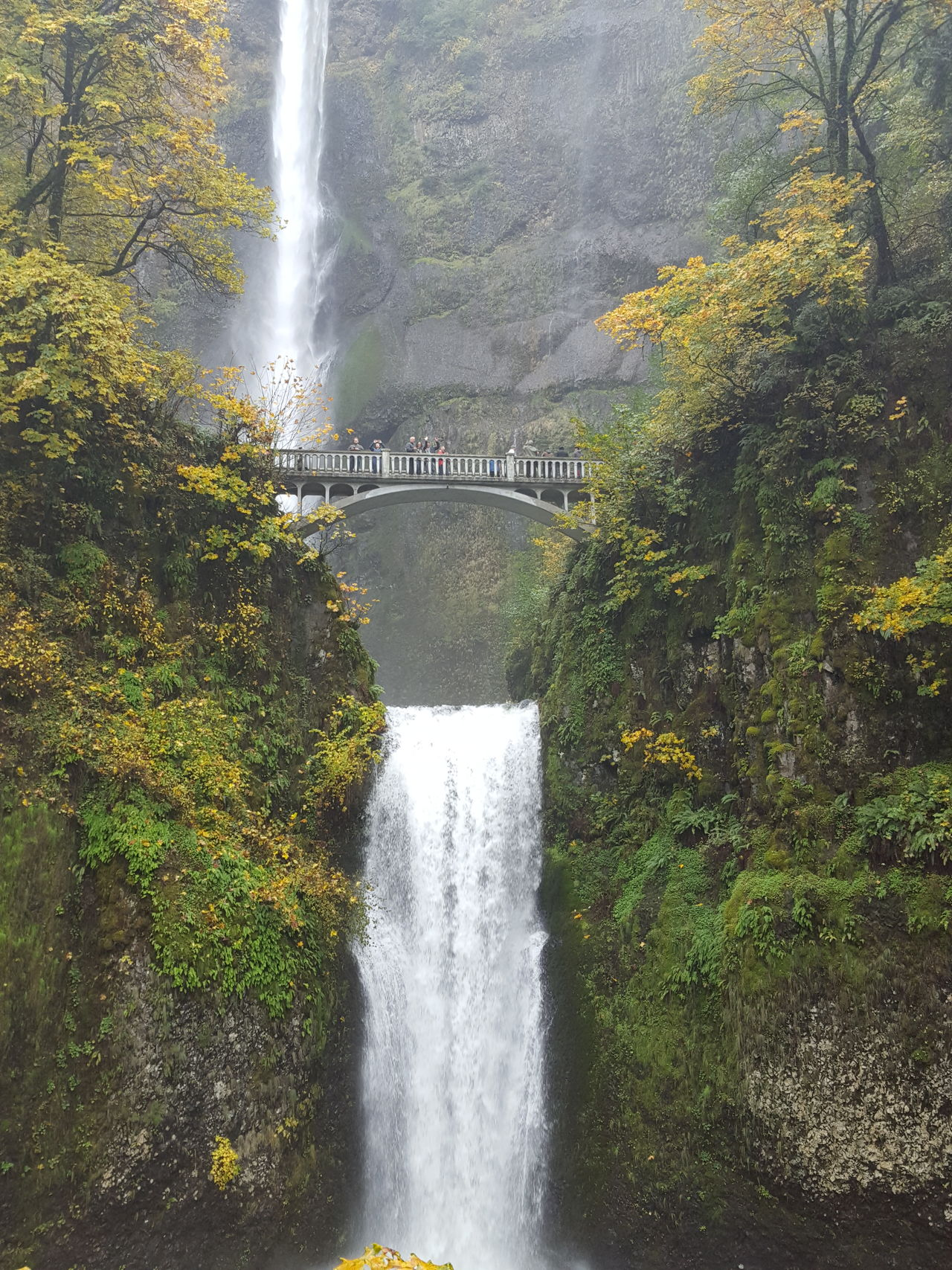 Multnomah Falls  Oregon Water Trees Nature Natural Beauty Fall Colors Tourism Travel