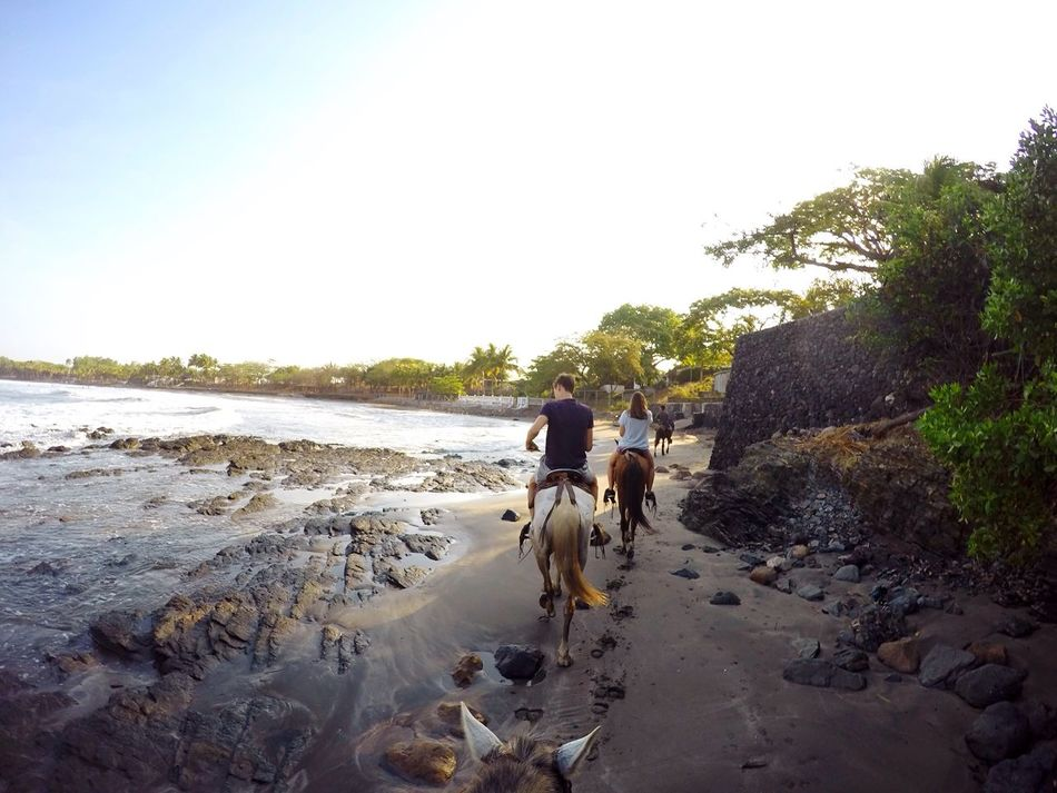 Beautiful stock photos of friends, Animal Themes, Beach, Beauty In Nature, Bonding
