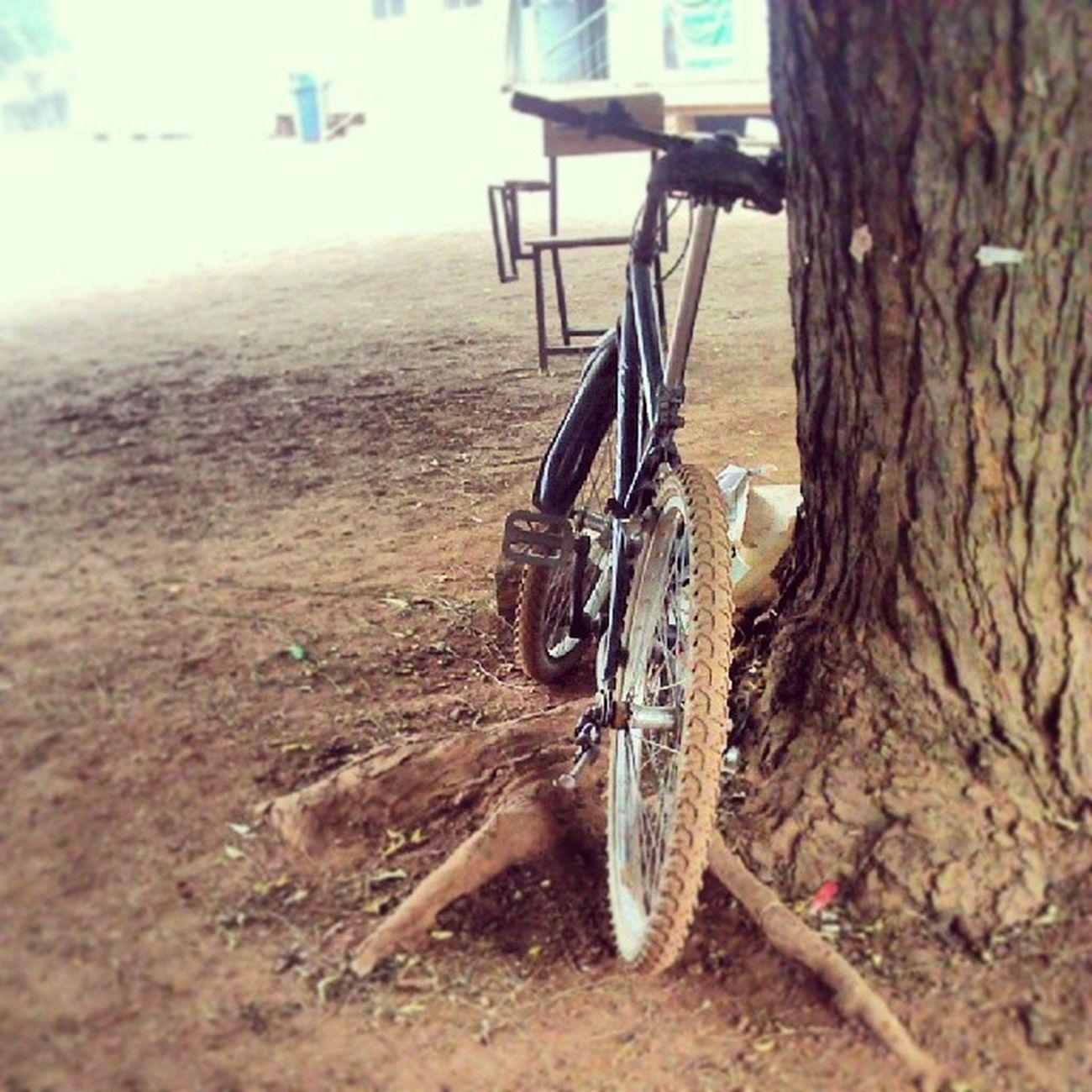 See, Bike! KampusLife Udsinsta