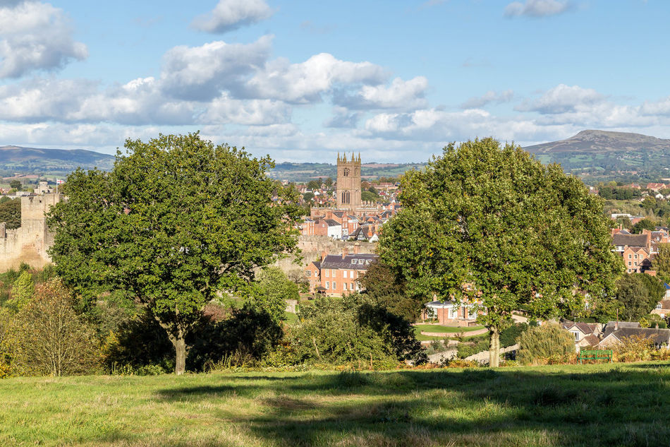 Ludlow from Whitcliffe common... Arial View Church Country Life Countryside Hills Hillside Landscape Landscapes Ludlow Ludlow Castle Ludlow Church Ludlow Shropshire Shropshire Shropshire Hills Shropshire Landscape Shropshire Town South Shropshire Town Tree Trees Uk Village Village Life Whitcliffe Whitcliffe Common
