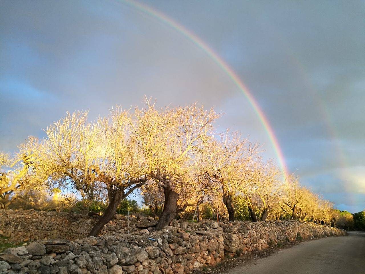 One Rainbow painted with the sun... Nature Beauty In Nature Scenics Outdoors Tranquility Landscape PalmaDiMaiorca GetbetterwithAlex Sunset Nostalgic Scene Sunlight Originalpicture Growth