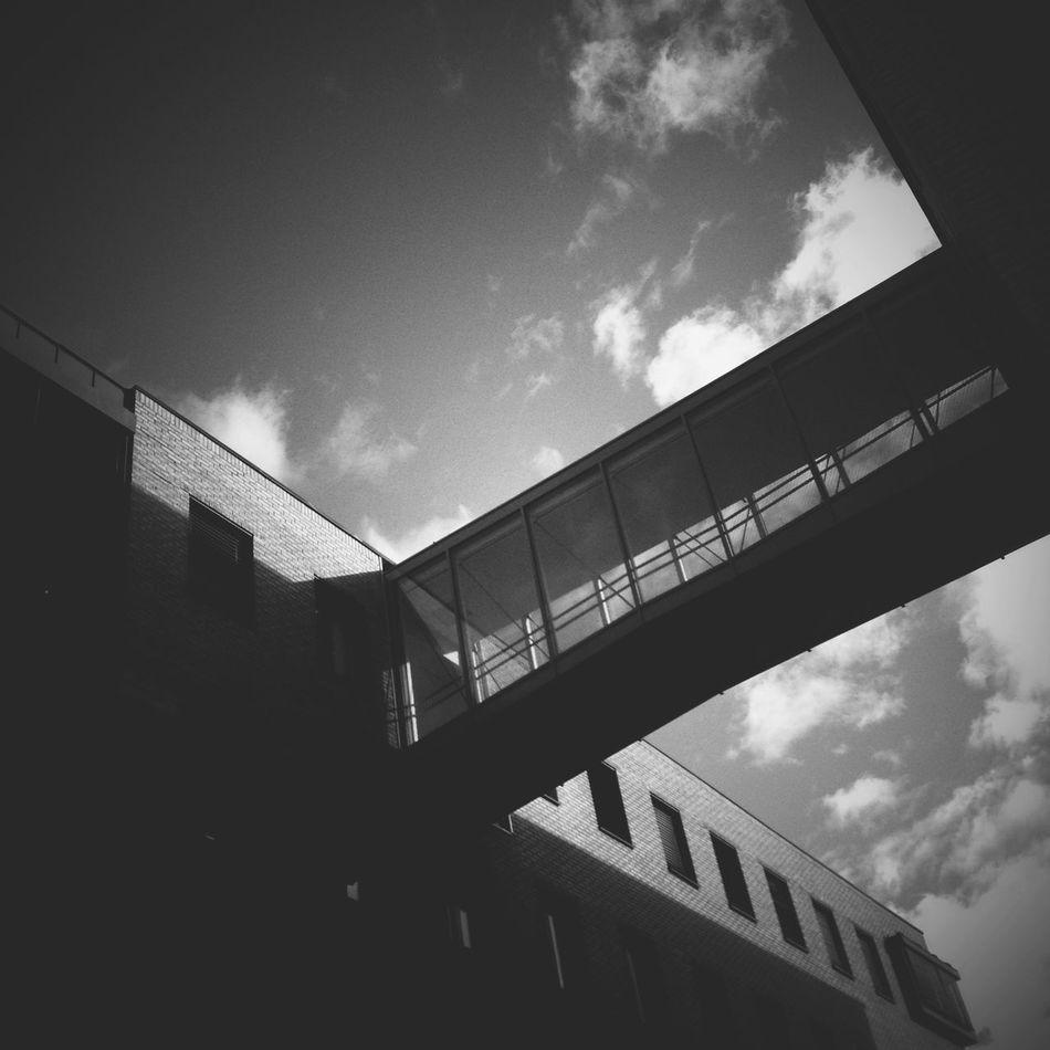 at work... NEM Black&white