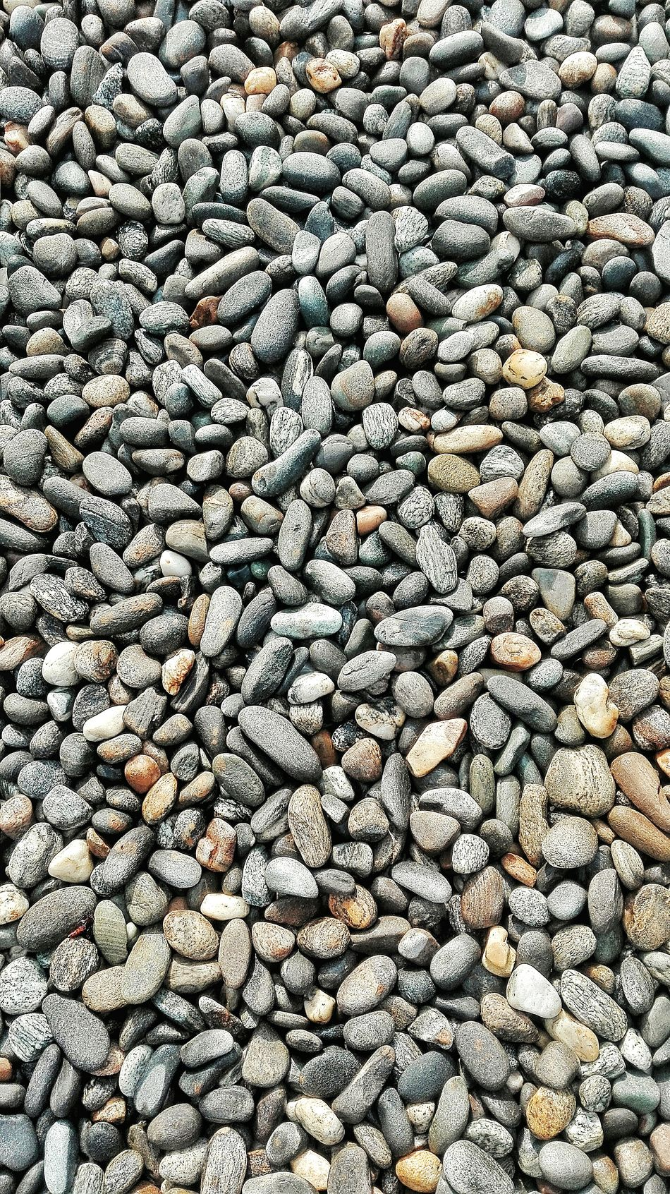 Pebbles for your wallpaper! Shotoftheday Wallpaper