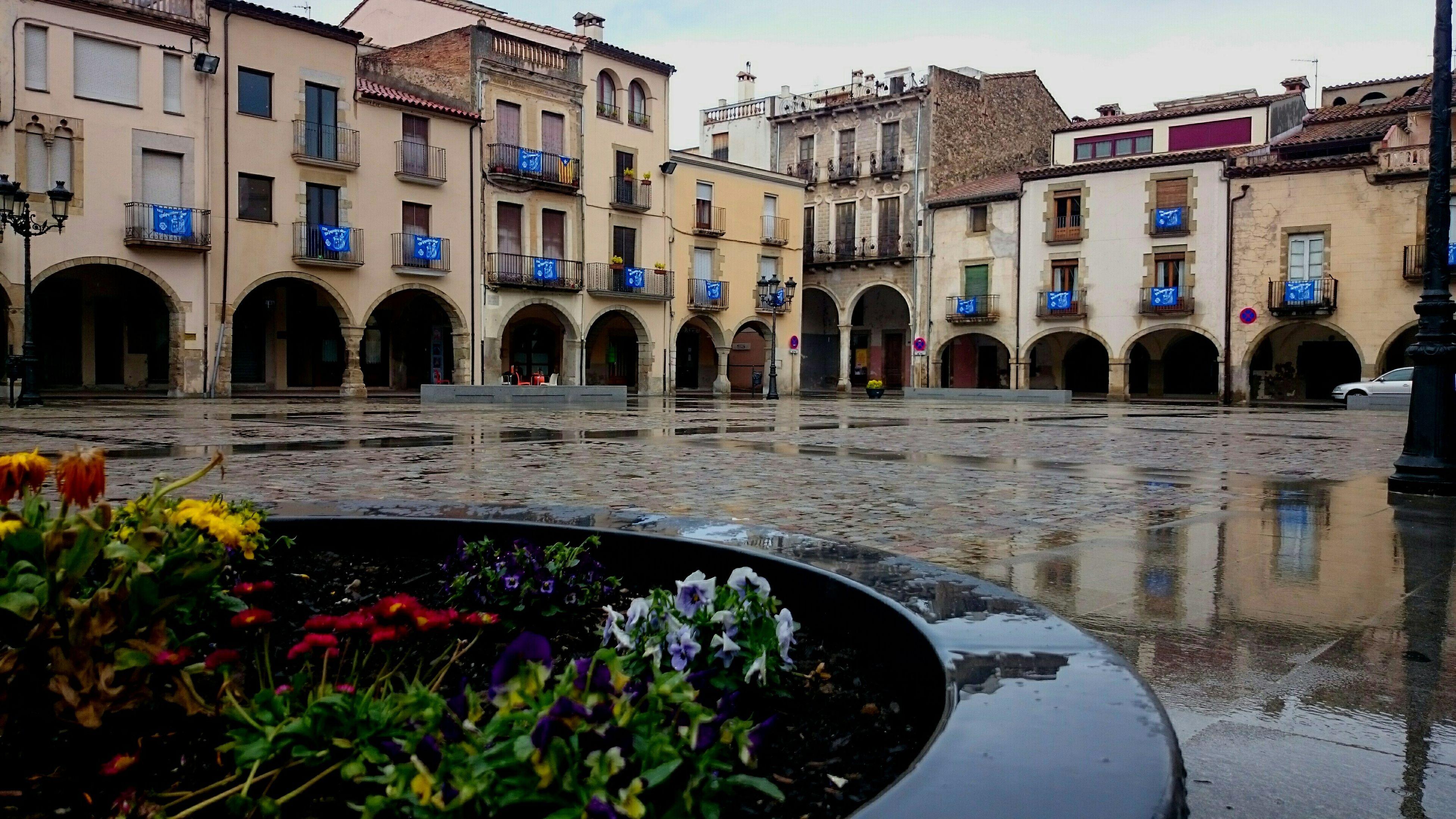 La plaza del pueblo Amer Girona Eye4photography  Photooftheday EyeEm Gallery Taking Photos Streetphotography Eyem Best Shots Flowers Rain Arquitecture