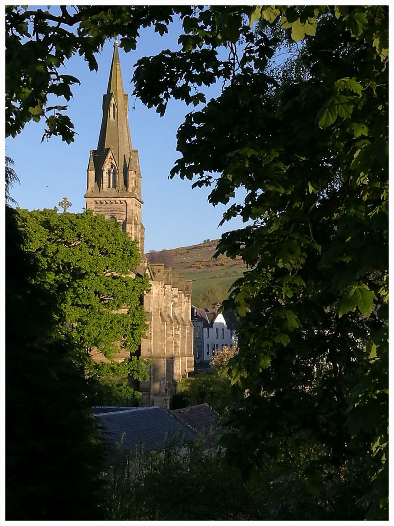 spire church of Scotland Falkland Fife Beauty In Nature Outdoors Green Color Leaf Trees And Bushes Street Photography Architecture Building Exterior