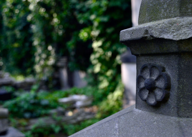 Cemetery Close-up Cmenatrzżydowski Cmentarz Focus On Foreground Nature No People Old Stone Material Tom