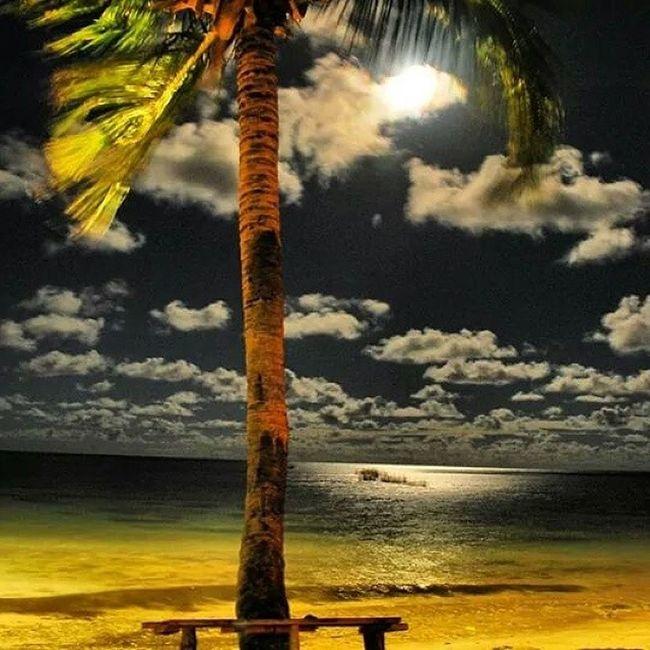 ♪♫ pode abrir a janela, noites com sol são mais belas ♫♭ FlavioVenturini RonaldoBasto NoitesComSol Maceió Alagoas Brasil ParaísodasÁguas Beach Amazing World Brazil Beautiful FaeldiSampa PretinhoBásico Odp OusadosDoPoder Job EderMiguel Sucesso Love Instagood