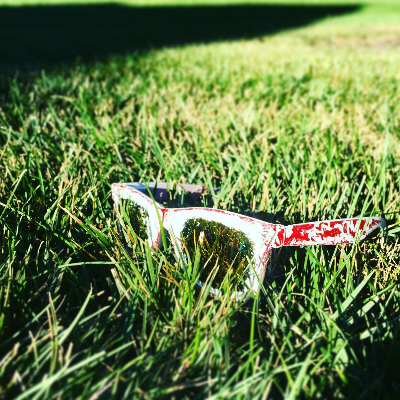 Abandoned Sunglasses On Grassy Field