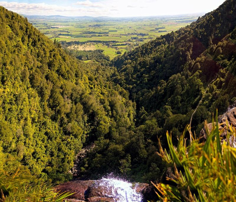 Nature Photography Nature Green New Zealand Paradise Waterfall Top Perspective Top Of The Rock Amazing View Secret Garden Green Nature Green Leaves Sky And Trees Endlessview Showcase March Once In A Lifetime