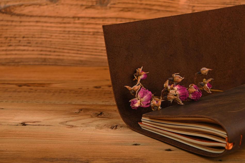 Beautiful stock photos of books, Book, Brown, Decor, Dry