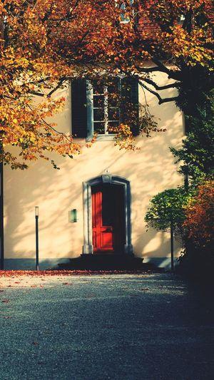 Casa dolce casa.. First Eyeem Photo