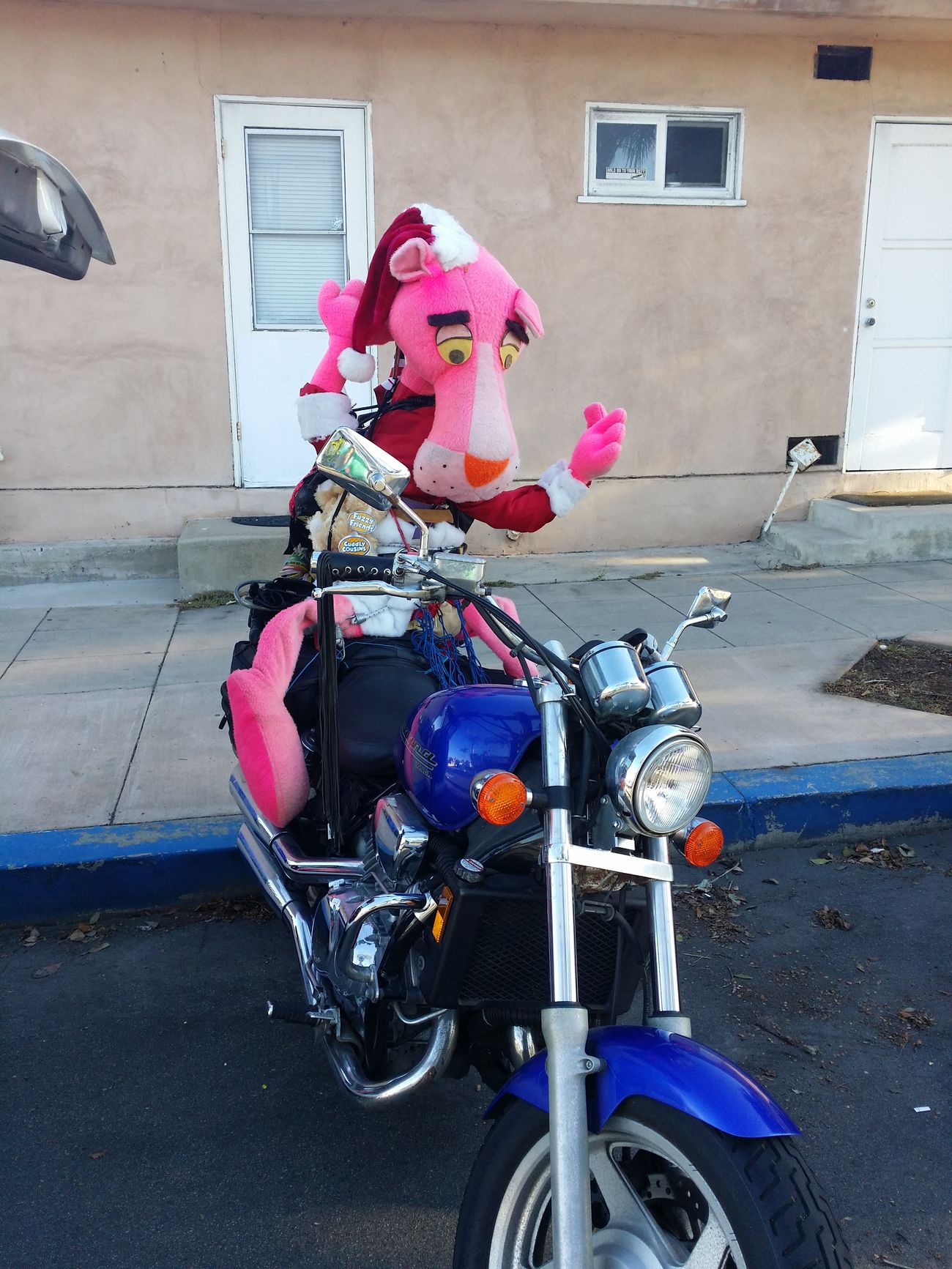 Pink panther on a ride and now going to bed until next year Outdoors MotorcycleStories Motorcyclelifestyle Motorcycle Photography Pink Oanter Rides Again Honda Bike With Pink Panther Biker Pink On The Road Pink Panther On The Bike Motorcycle Pink Panther Motorcycles Lover Jonhson And Johnson Donation Collection Special Effects Adopt To Save A Life