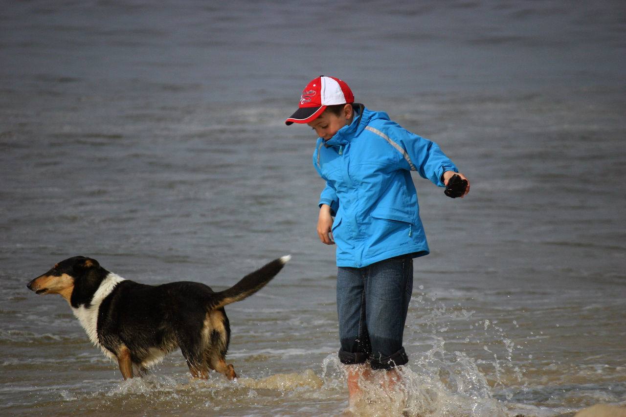 Animal And Human Beach Boy And Dog Dog Holiday One Boy Sea Splashing Water Water