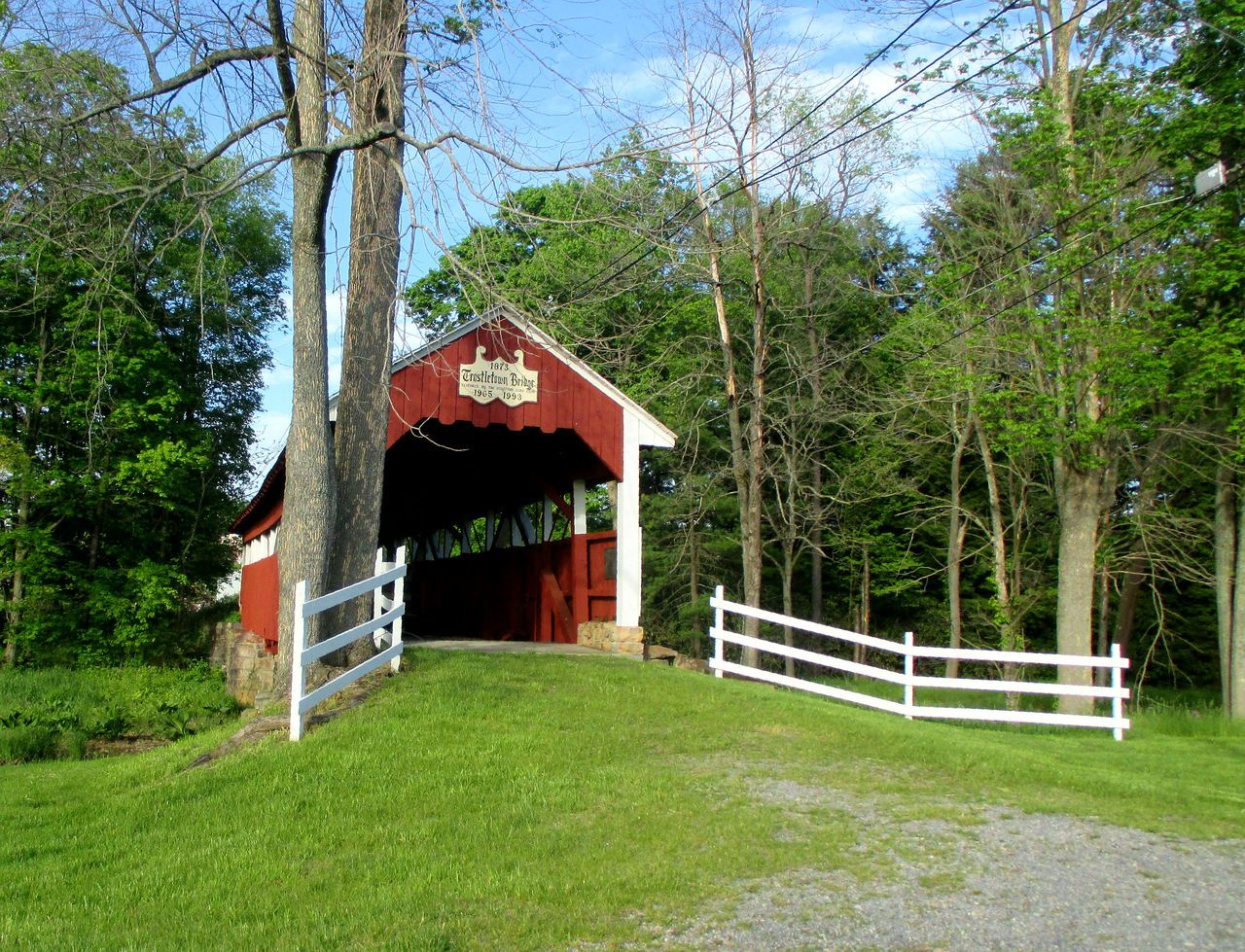 Covered bridge Tree Grass Green Color Built Structure Architecture Day No People Outdoors Growth Sky Nature Nature Covered Bridge Bridge Fence