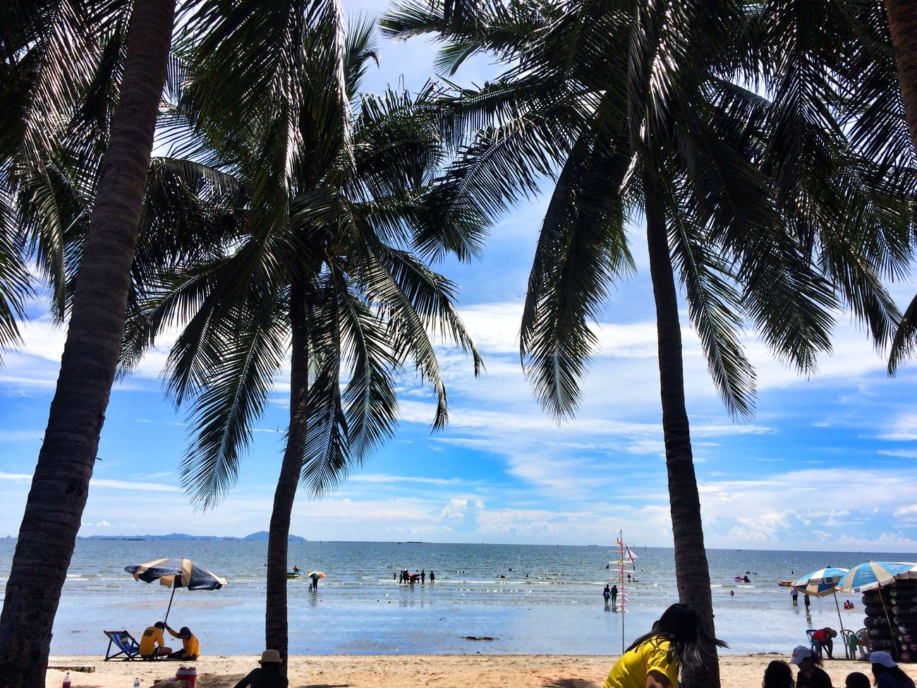 The beach Palm Tree Sea Water Beach Tree Horizon Over Water Tranquil Scene Incidental People Vacations Tranquility Sky Tourist Tourism Scenics Beauty In Nature Mode Of Transport Nature Tree Trunk Shore Travel Destinations