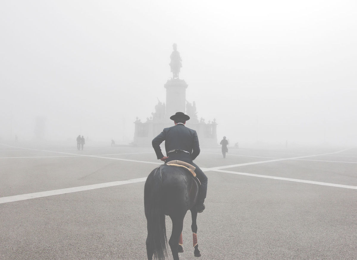Fog City My Best Photo 2014 Silhouette Seeing The Sights