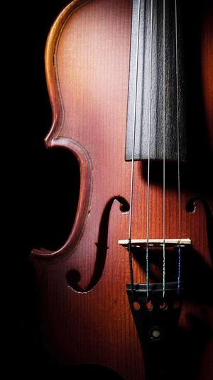 Music Violin Passion Black Photography Lovely Rithm Wood Musiclover Studio Shot Love Silhouette Light Close-up