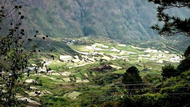 Sagada Adventure Trekking #travelling #sightseeing