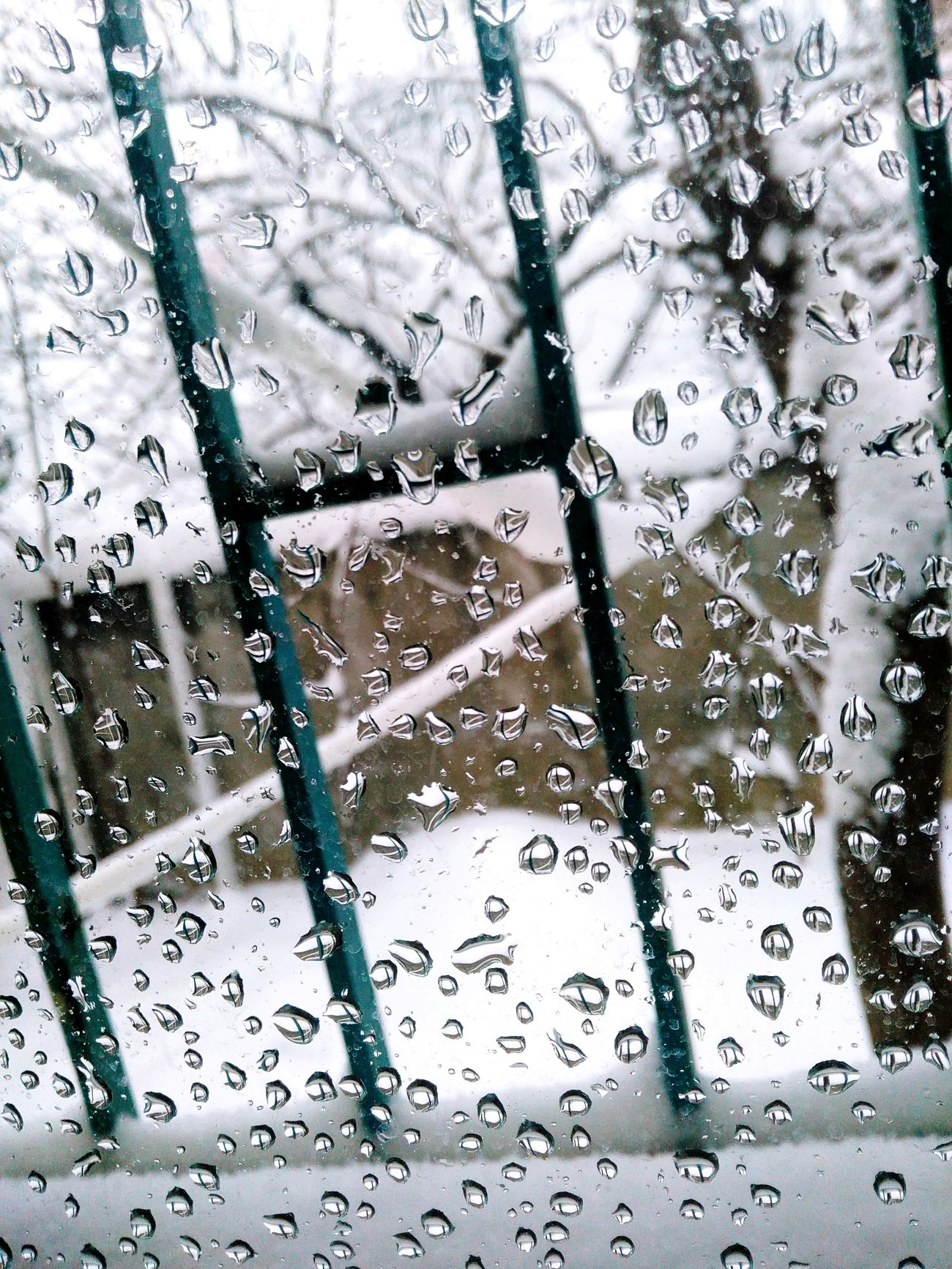 Winteriscoming Snow Wintertime White ❄ ❄ Snowflakes ❄ ❄ It's So Cold . ❄️frozen❄️ ❄❄ Very Cold Nature LoveNature Darkness And Light