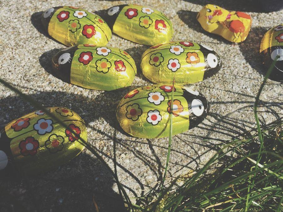 Easter Ready Easter Fun Springtime EyeEm Gallery Childernplay Grass Coccinelle