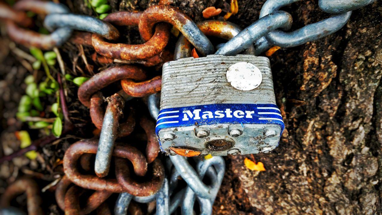 Chicago Scout Montrosebeach Master Lock Lock Chain Chainlink Metal Nature Lock Chain