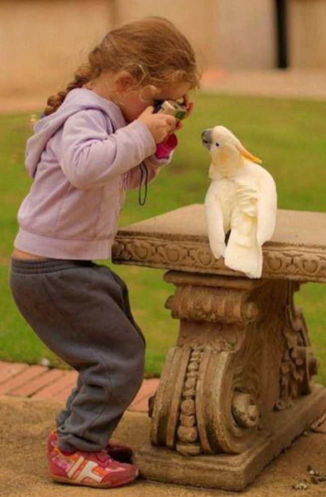 Ama aynı benim küçüklüğüm :) ILovePhoto Childiren Beautiful Girl Bird Photography