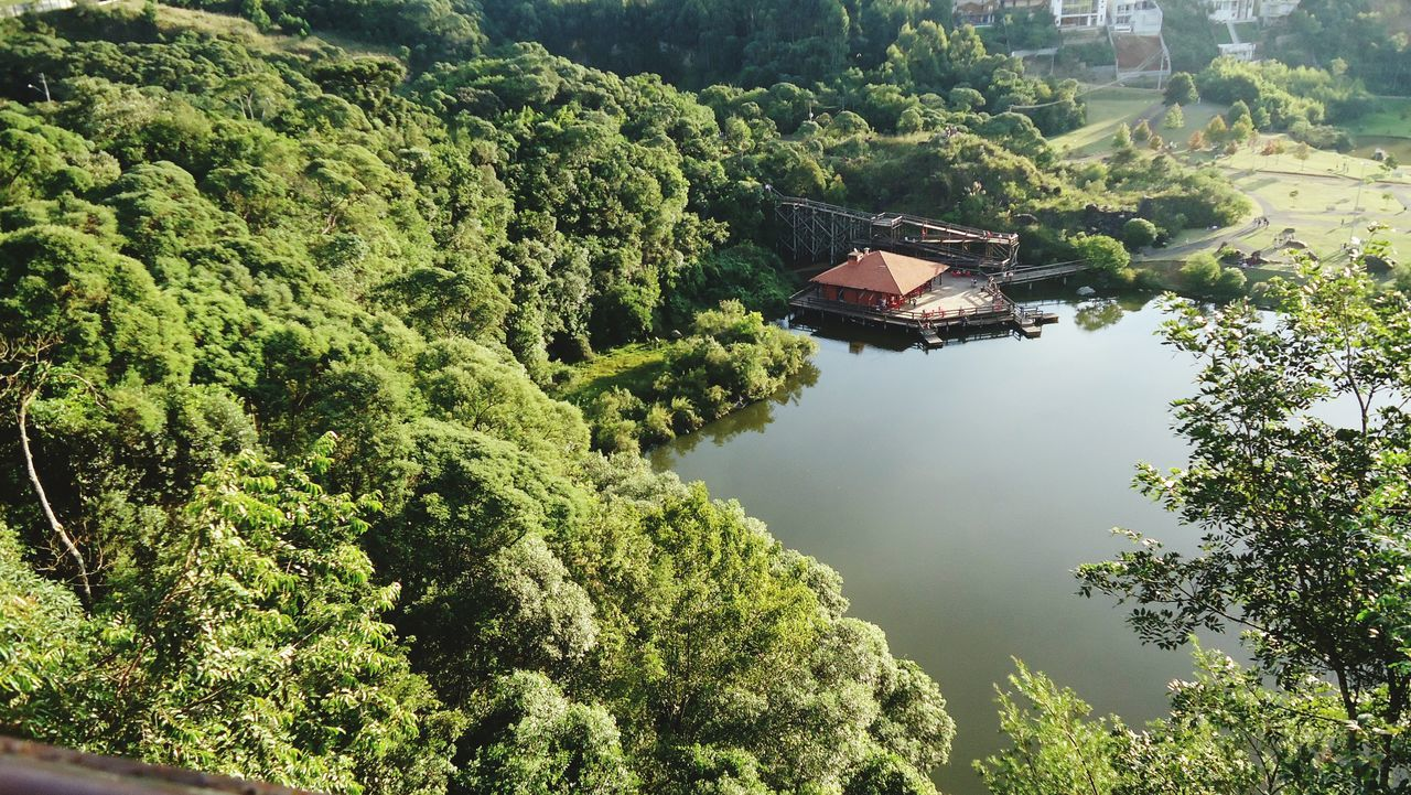 High Angle View Of Calm Lake In Forest
