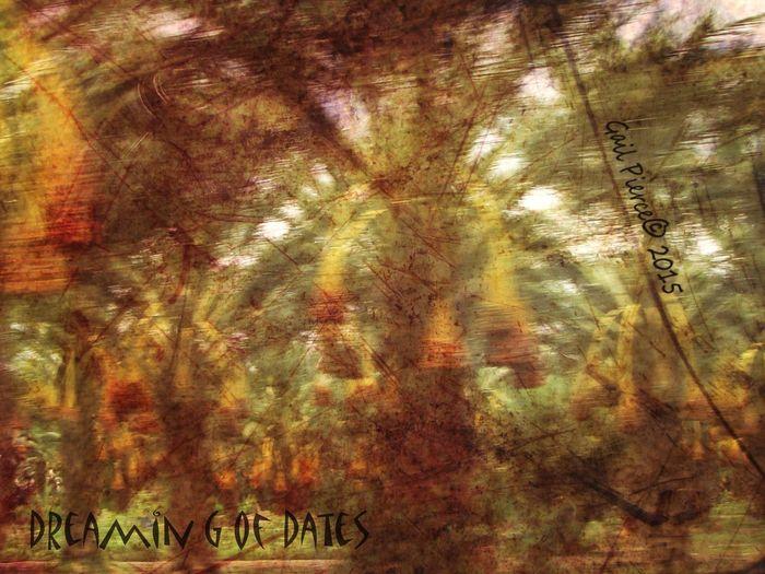 Date Trees, Coachella Valley, CA Trees, Palm Trees Salton Sea, Digital Expression Distressed